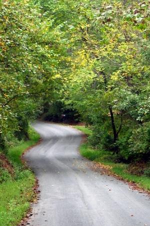 buckingham-road