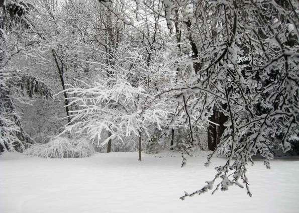 Slate River Ramblings_Snow-Day-2013