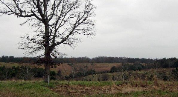 Slate River Ramblings_Harris-Farm_2009
